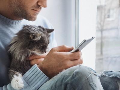 Application mobile pour la santé animaux